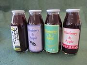 小瓶入りジュース(ブルーベリー&りんごミックス、りんご)